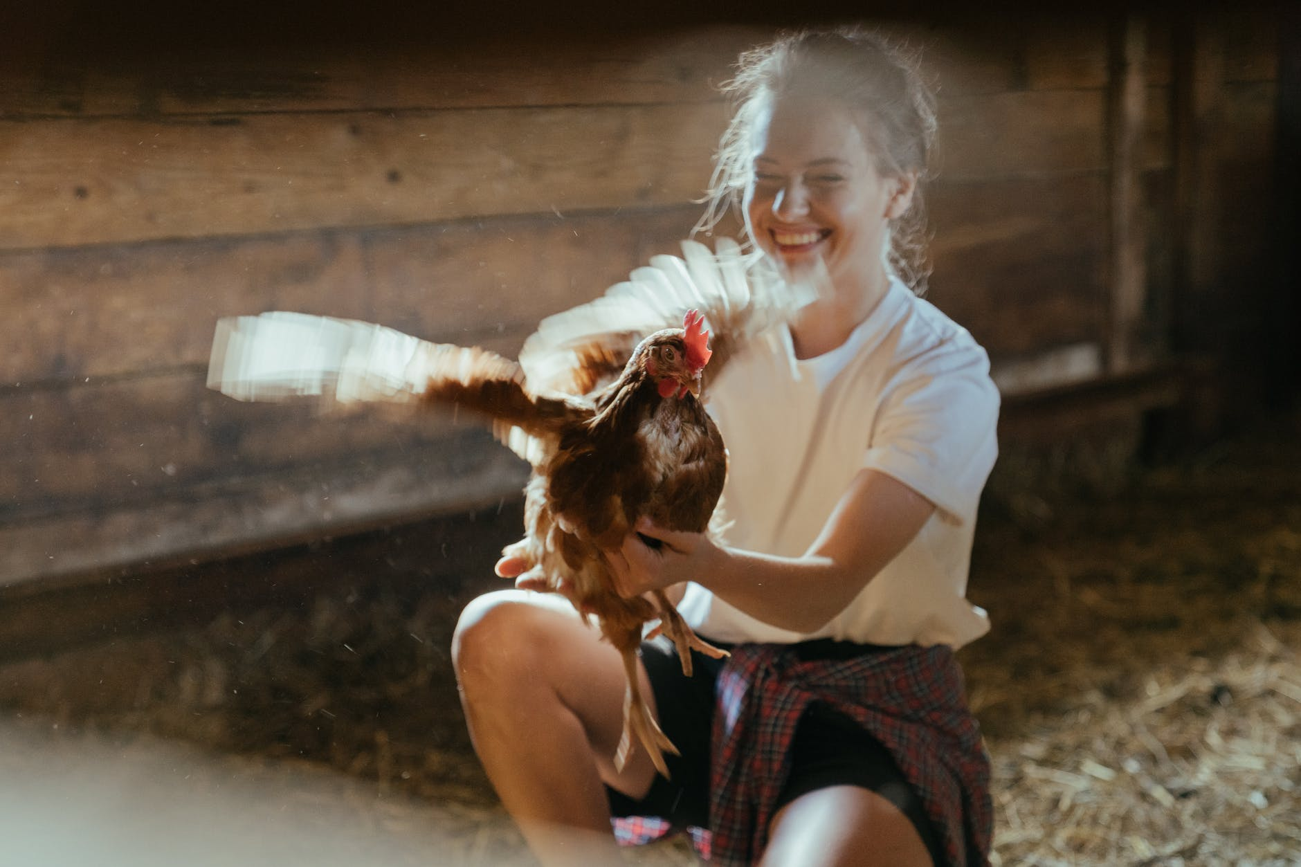 woman in white t shirt holding brown and white bird